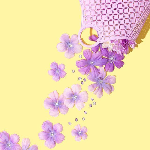 Purple // Violet Tinder Studios