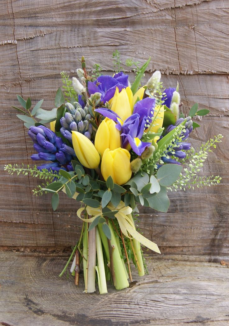 Spring hand-tied bridal bouquet of yellow tulips, purple iris, green thlaspi, blue hyacinth and pussy willow. Quirky ribbons, like this polka-dot one, add a special something to bouquets. Florissimo, Shropshire