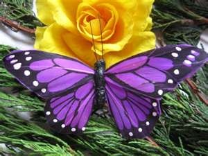 love the purple: Beautiful Butterflies, Purple Butterflies, Yellow Rose, Nature, Purple Butterfly, Flowers, Animal