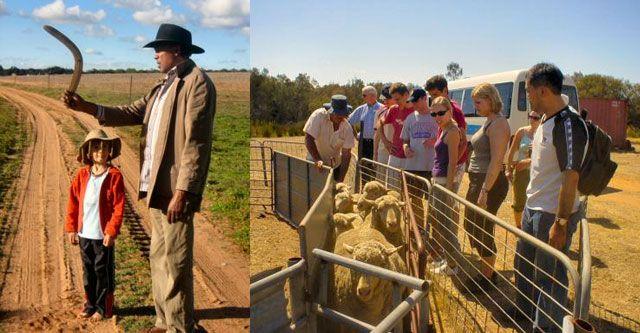 Perth farm tour at Boshack Outback