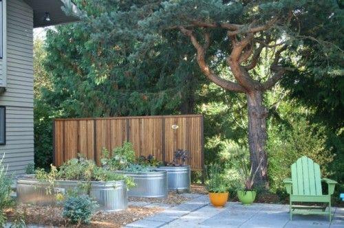 aluminum water troughs for raised flower beds: Small Patio Gardens, Raised Beds, Banyon Trees, Contemporary Patio, Rai Gardens Beds, Trees Design, Stockings Tanks, Veggies Gardens, Design Studios