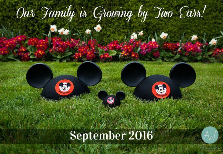 Mickey Mouse Ears Disney Pregnancy Announcement. Mickey pregnancy announcement.