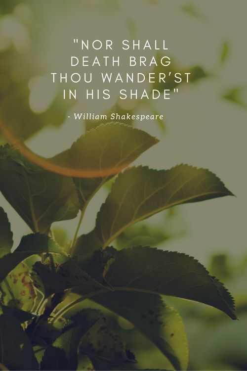 Sonnet 18, Shall I compare thee to a summer's day? by William Shakespeare - Nor shall death brag thou wander'st in his shade