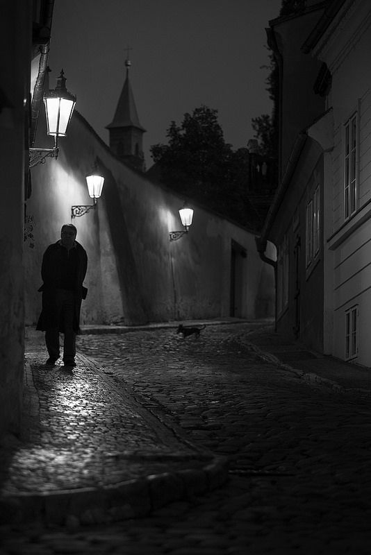 Atmosphere street in prague with shadow puppy