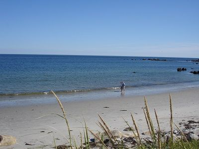 Bayswater Beach Provincial Park