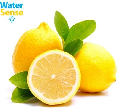 Vitamin C equivalent to 3,000 lemons
