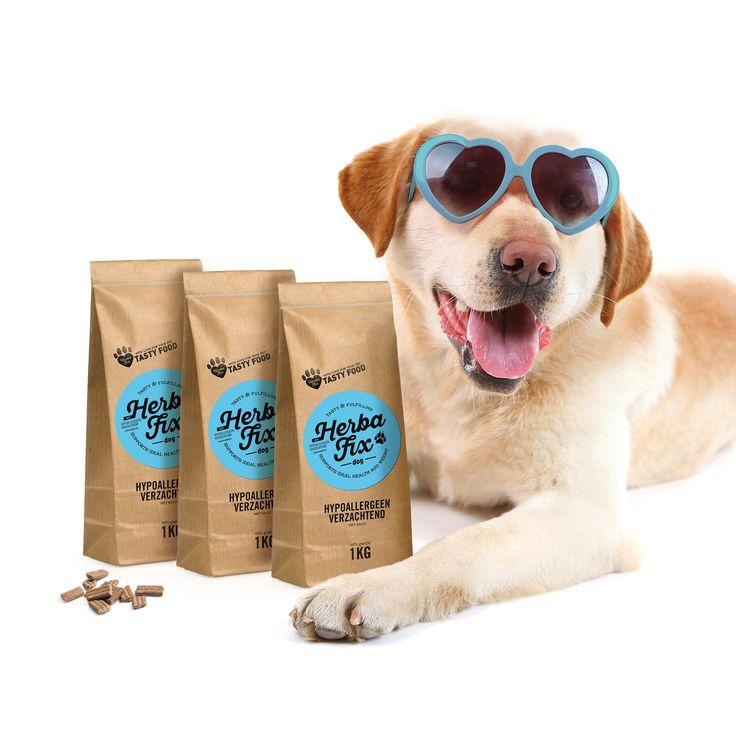 Op vakantie met jouw hond? Een must have om mee te nemen op vakantie. Deze ideale reisverpakking van 1 kg past perfect in jouw bagage of rugzak.