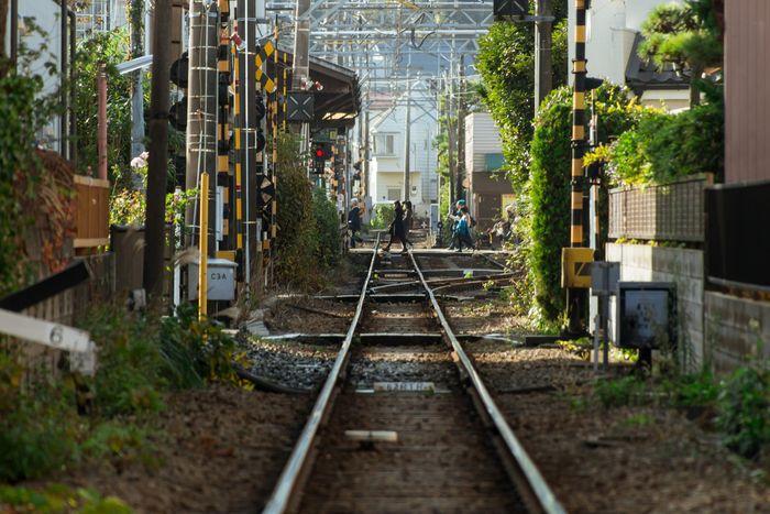 江ノ電・長谷駅は、鎌倉から3つ目、由比ガ浜と極楽寺の間にある駅です。長谷と聞いて真っ先に思い浮かぶのは・・