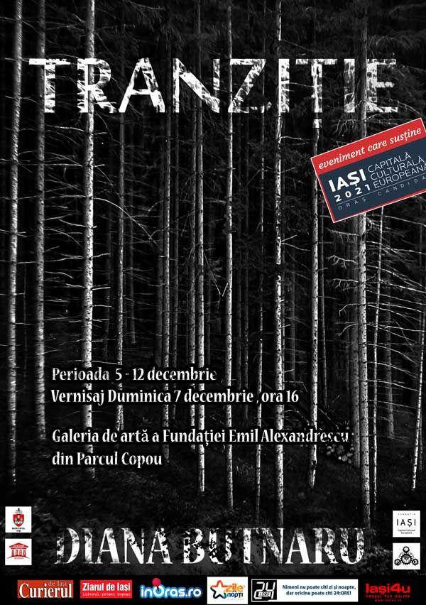 """Expozitia de fotografie """"Tranzitie"""", Diana Butnaru"""