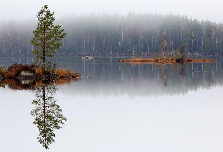 Photo Gallery: One misty, moisty morning... | Yle Uutiset | yle.fi Suomi, Finland