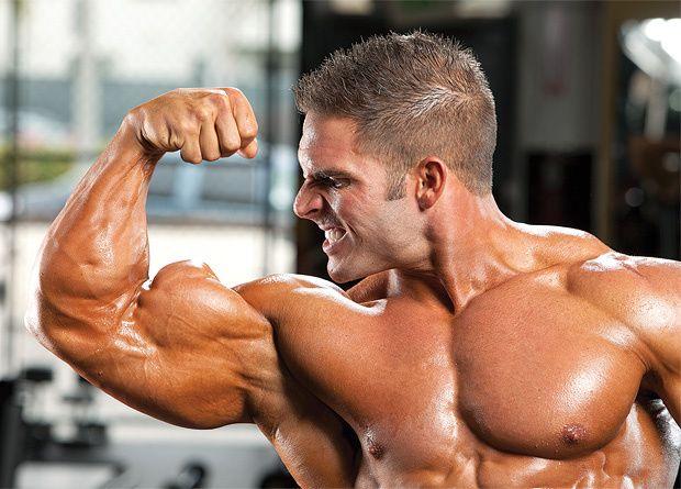 Gynecomastia: Causes Cures IronMag Bodybuilding Blog