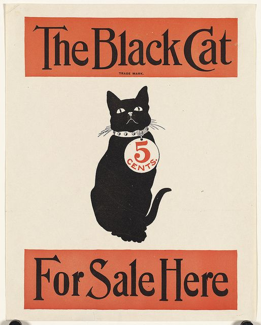 The black cat for sale here   Flickr - Photo Sharing!