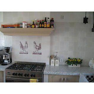 Voorbeelden - Fotogalerie - Photo Gallery Haan met hen - www.OldDutchtiles.com