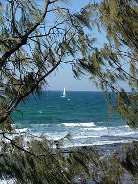 Sailboat, Alexanda Headland, Sunshine Coast, Queensland, Australia