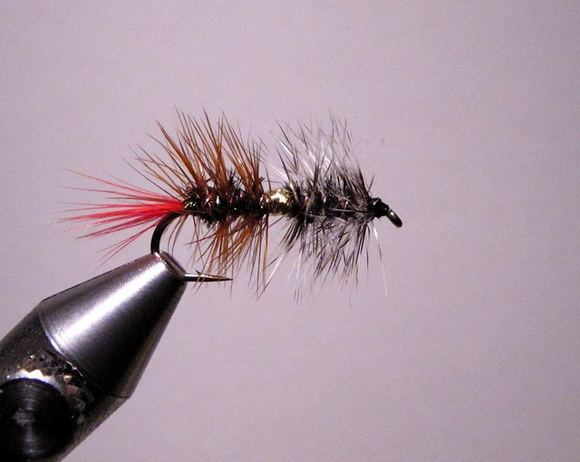 In this video Jay Nicholas ties a classic attractor pattern resembling the Renegade. Jay's version will float and fish like a traditional dry or swing down and across as a wet. The Guide Secret pattern includes simple, but proven fish catching materials.