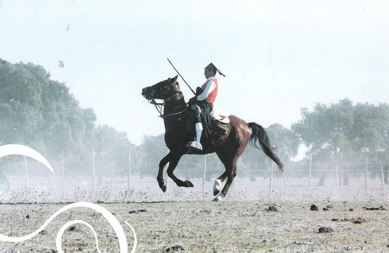 Campino a cavalo