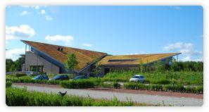 Groene daken | Sedummatten | Sedumdak | Daktuin | Groene gevels - Sempergreen