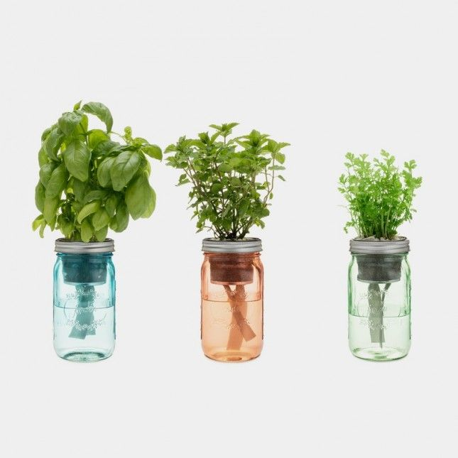 This jar herb kit is the perfect kitchen accessory.