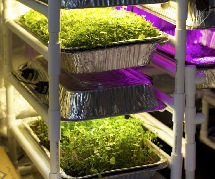 This project improves upon the first version of a grow light designed to fit on a PVC rack for baking pans.1. Cheaper. Switched out pricey full-spectrum LEDs for standard CFLs. ...