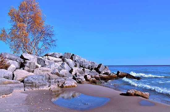"""Bluffers Park"" 
