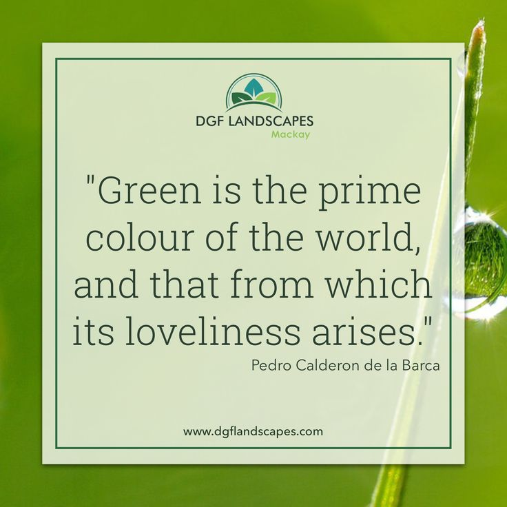 """""""Green is the colour of the world, and that from which its loveliness arises."""" - Pedro Calderon de la Barca"""