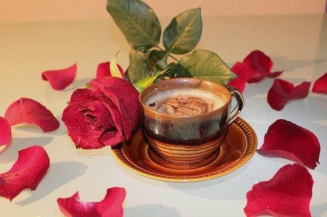 وردتي هذا الصباح مغمورة بالقهوة قهوتي هذا الصباح بنكهة الورد و بين عبق القهوة و ألق الورد بين عطر الوردة و يقظة Coffee Cafe Coffee Images Coffee Love