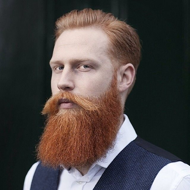 Gwilym Pugh - full thick long red beard and mustache beards bearded man men mustaches ginger redhead bearding handsome #beardsforever