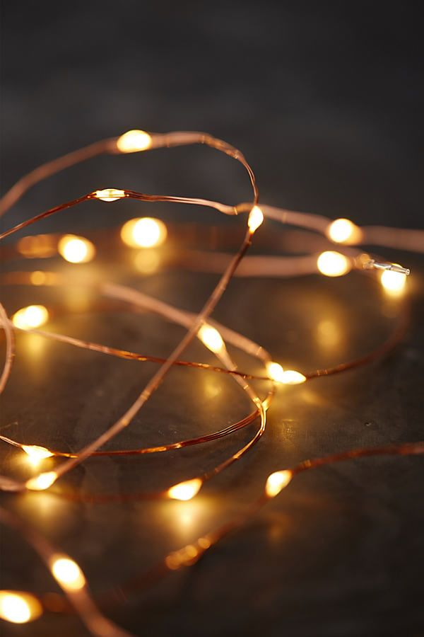 Stargazer Copper Twine Lights 50 Plug In Fairy Light Photography Lit Wallpaper Light Photography