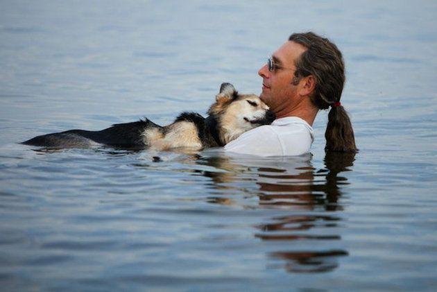 """""""Schoep, a 19-year-old arthritic dog is being cradled in his father's arms in Lake Superior. Schoep falls asleep every night when he is carried into the lake. The buoyancy of the water soothes his arthritic bones. Lake Superior is very warm right now, so the temp of the water is perfect. John rescued Schoep as an 8 month old puppy, and he's been by his side through many adventures."""" Beautiful story!!!"""
