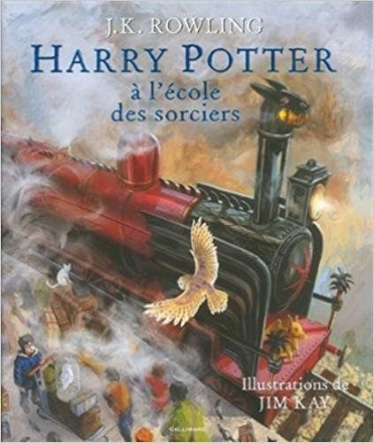 Amazon.fr - Harry Potter à l'école des sorciers - Beau-livre collector - J. K. Rowling, Jim Kay, Jean-François Ménard - Livres