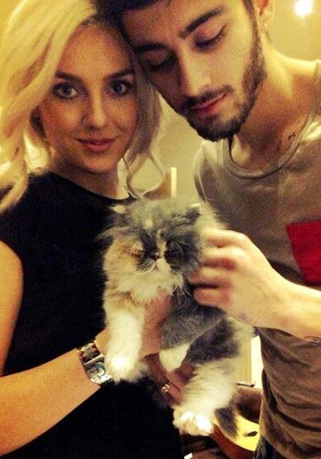 NEW ADDITION TO THE ZERRIE FAMILY: Prada, the cat ;) too cute!