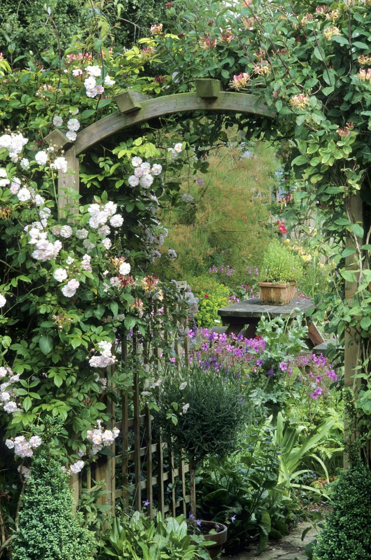 best mijn tuin images on pinterest gardening landscaping and