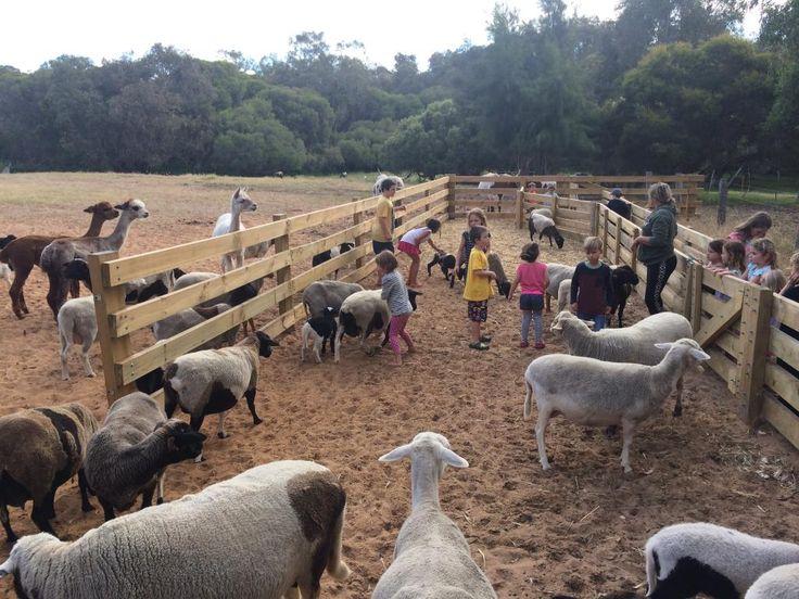 Willowbrook Farm Gingin