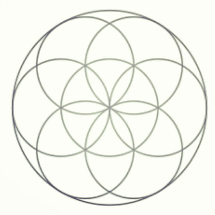 """""""The Flower of Life"""", OrganiZEN's logo.  The form, proportion and harmony of the FOL has been known to philosophers, architects and artist around the world. Pagans consider it to be sacred geometry containing ancient values depicting the fundamental forms of space and time. In the pagan sense, it is believed to contain a type of Record of basic information of all living things and is the visual expression of the connections of life that run through all sentient beings."""