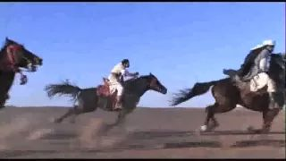 Arabian Horse Tribute - Videos and Pictures - YouTube