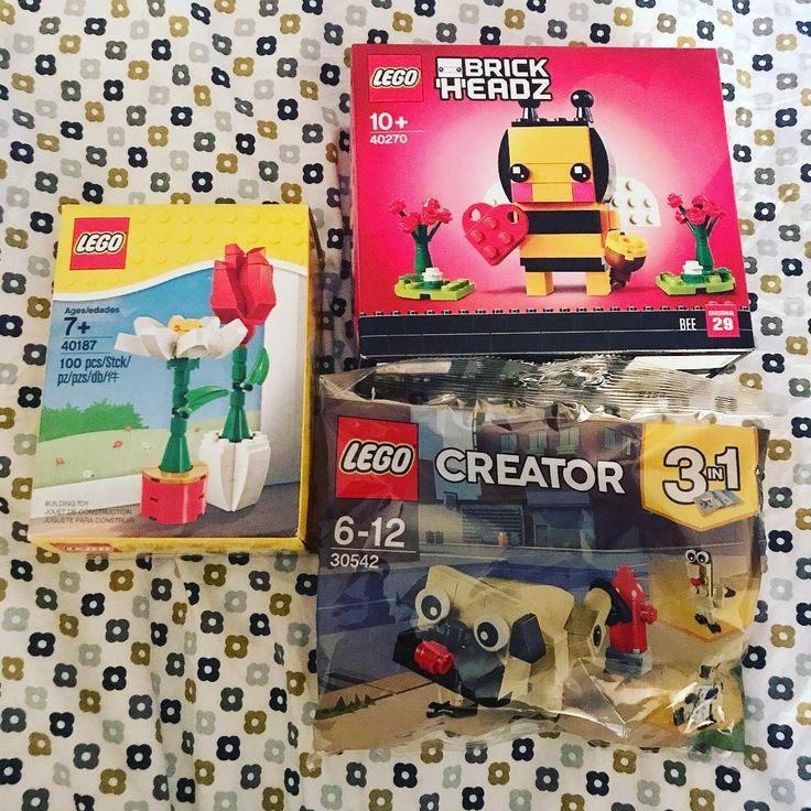 My latest Lego haul! The bee and flowers from Lego shop at home and the cute pug poly bag from Tesco. #lego #legohaul #legoset #legostagram #legophoto #legobrickheadz #brickheadz #legocreator #legoraphy #bee #pug #afol