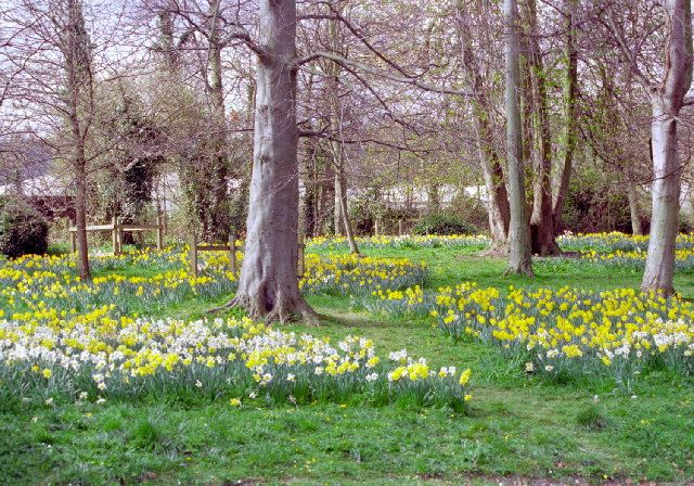Hampden Park, Eastbourne,