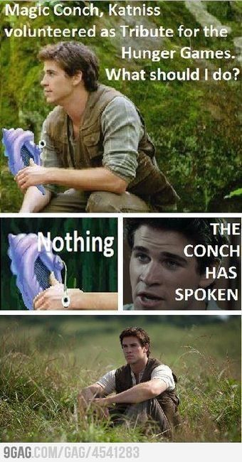 From what I gathered from the conversation I had with my friends about Gale doing absolutely nothing from the point Katniss volunteered at the reaping until the end of the Hunger Games movie (NOT book. There are major differences there); I can now see that this summarizes our impressions perfectly. XD HAHA!