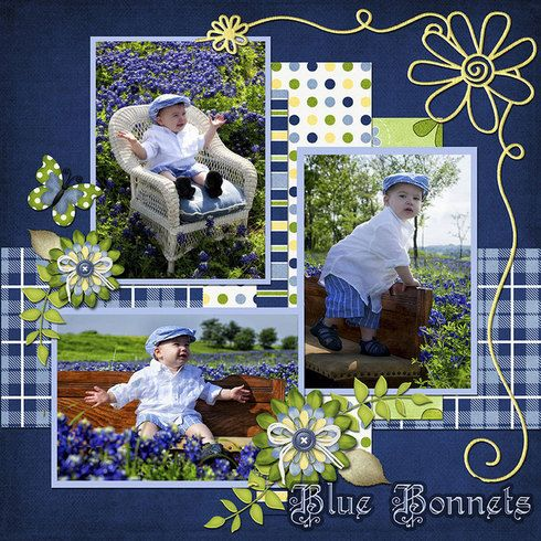 Texas Blue Bonnets, digital layout by scrap happy