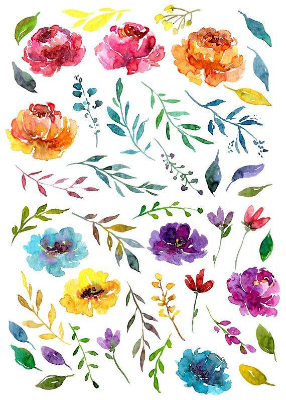 Bright Watercolor Floral Clipart Digital Download Aquarelle Summer