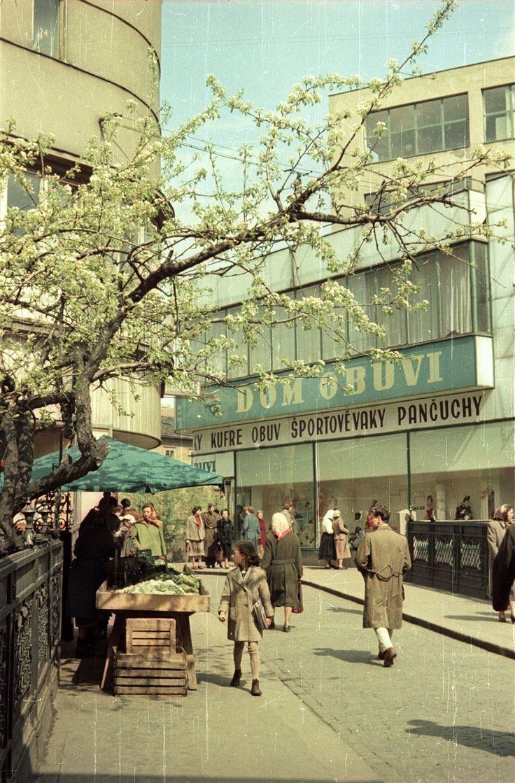 Na farebných fotografiách z roku 1959 si môžeme všimnúť uličky v okolí dnes už neexistujúcej synagógy a Rybného námestia. Úžasný je pohľad na ľudí opaľujúcich sa na nábreží Dunaja, na električku zabočujúcu pri Redute, na kofy ponúkajúce zeleninu na Michalskom moste či na deti hojdajúce sa v hradnej záhrade.