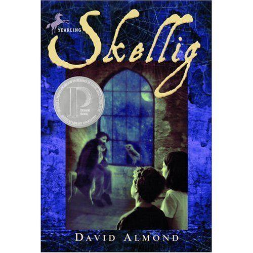 Skellig - David Almond