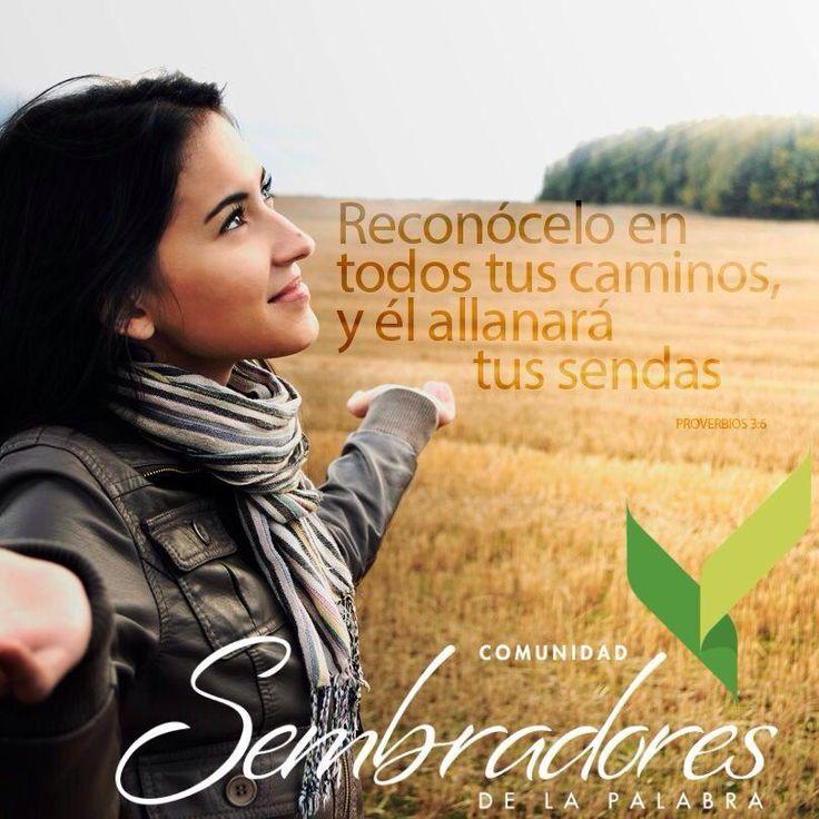 En todos tus caminis, frases espirituales, #frasesdelabiblia #sembradoresdelapalabra #comunidadcatolica #comunidadsempal #rccdecolombia #rccbogota http://www.sembradoresdelapalabra.com/
