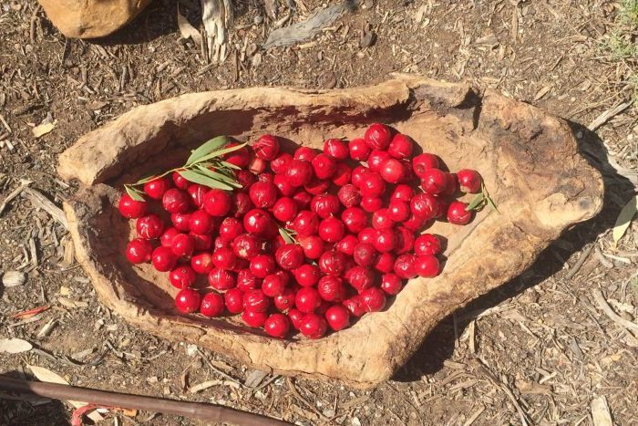 Quandongs in a wooden bowl