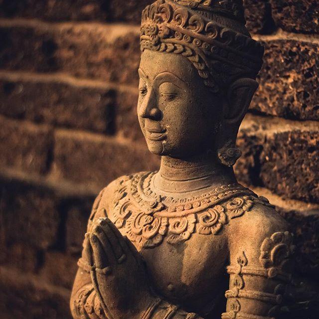 Me encanta este Buddha como símbolo del amor incondicional como un recordatorio de nuestra misión como humanidad.  .  .  #elementsoflifecomunidad  #bienestar #balance #armonia #conexion  #vidaconsciente #espacioenergetico #concienciaplena  #vibracion #vibraamor #vibrandoalto  #positivasiempre #mindfulness #pensamientospositivos  #intuicion #inspiracion #reflexion  #espiritusguias #concienciacolectiva   #amorenelplaneta #energiasanadora