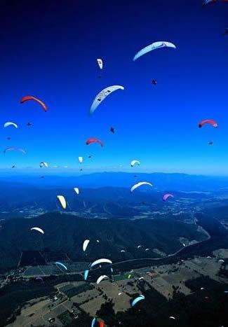 Google Image Result for http://www.goldfieldholidayunits.com.au/Images/paraglide_1.jpg