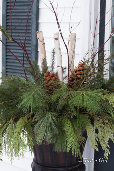 Pretty DIY winter urn or window boxes. Sometimes you can get free greenery from stores when they trim their Christmas trees.