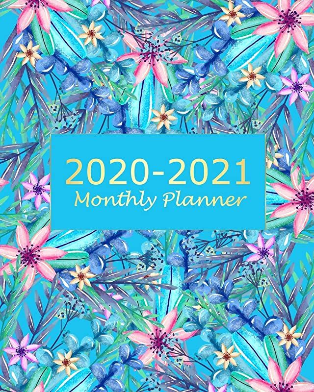Pdf Free 2020 2021 Monthly Planner Blue Floral 2 Year Monthly Planner Calendar Schedule Organizer January 2020 To December 2021 24 Months With Holidays And