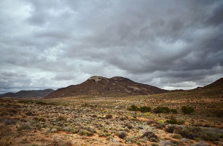 Between Kamieskroon and Springbok in Namaqualand, Northern Cape Province, South Africa - 75 kilometres of ancient copper-bearing granite domes shape and dominate the area's hills and valleys.