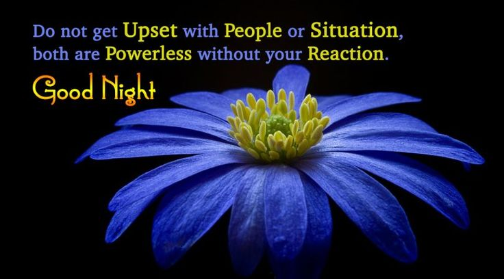 Do not get upset : Good Night #goodnight #gn #quotes